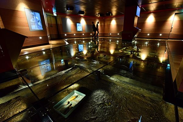 See the recreation of the Coppergate Dig at Jorvik Viking Centre