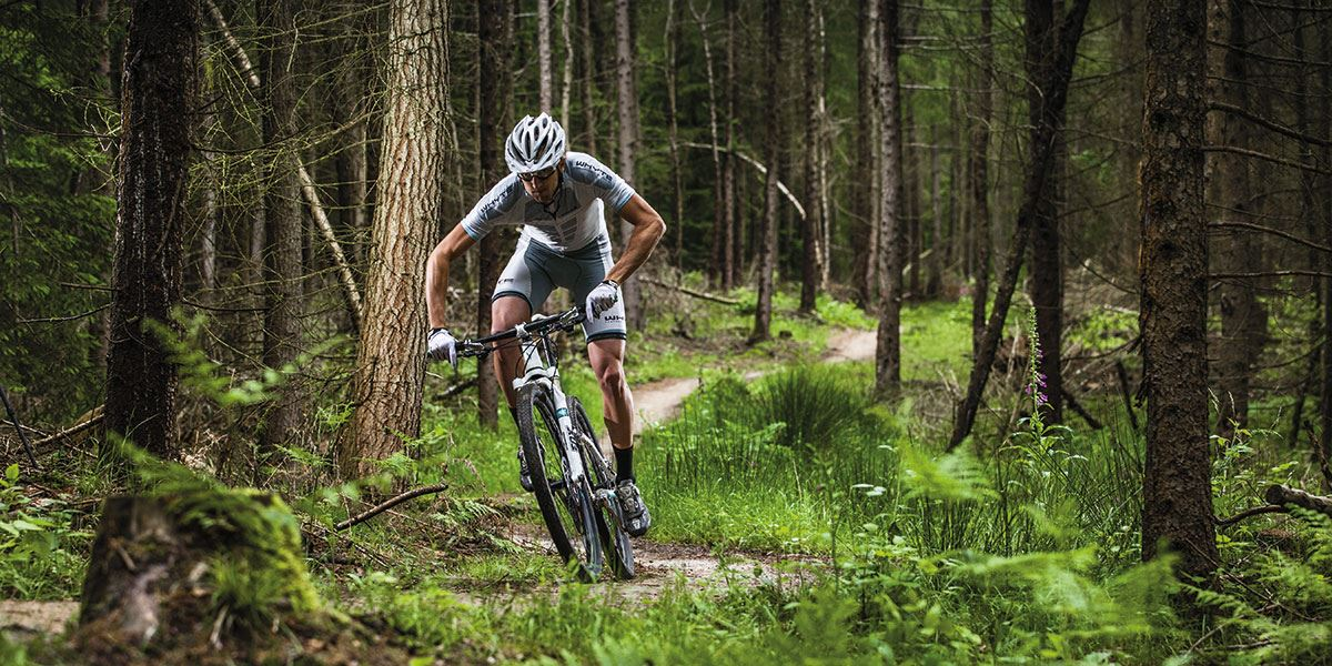 The Forest of Dean offers a vast range of mountain bike trails