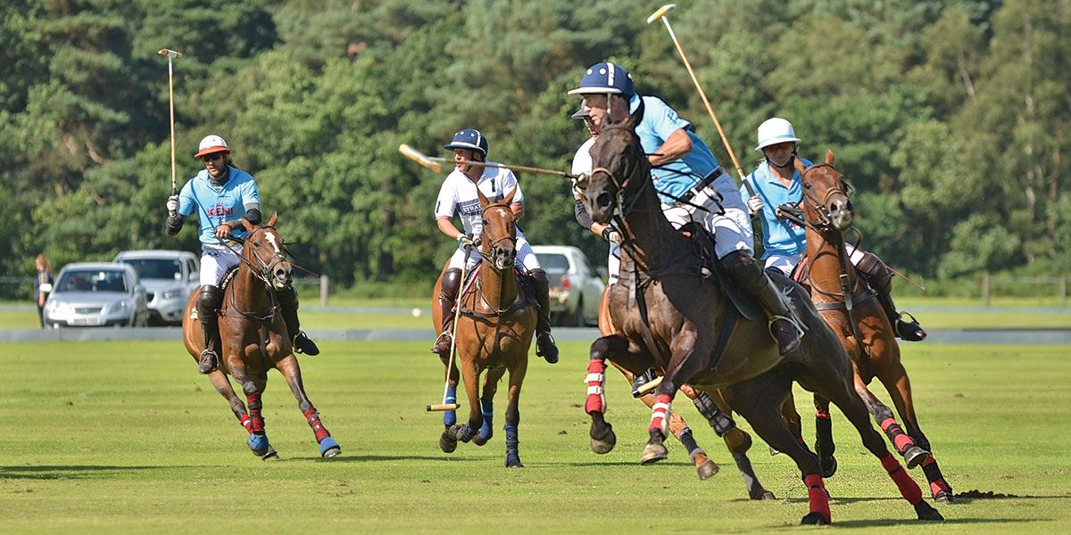 Watch a game of polo at Cheshire Polo Club