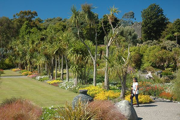 Logan Botanic Garden is bathed by the Gulf Stream