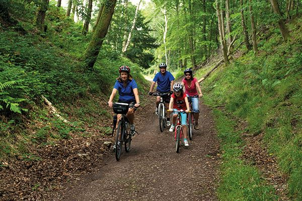 Grab your bikes and enjoy a ride through the forest
