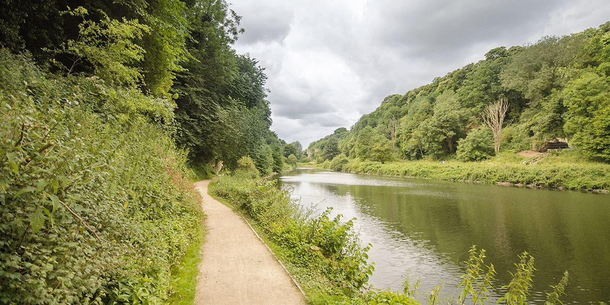 Walk by the river at Cresswell Crags