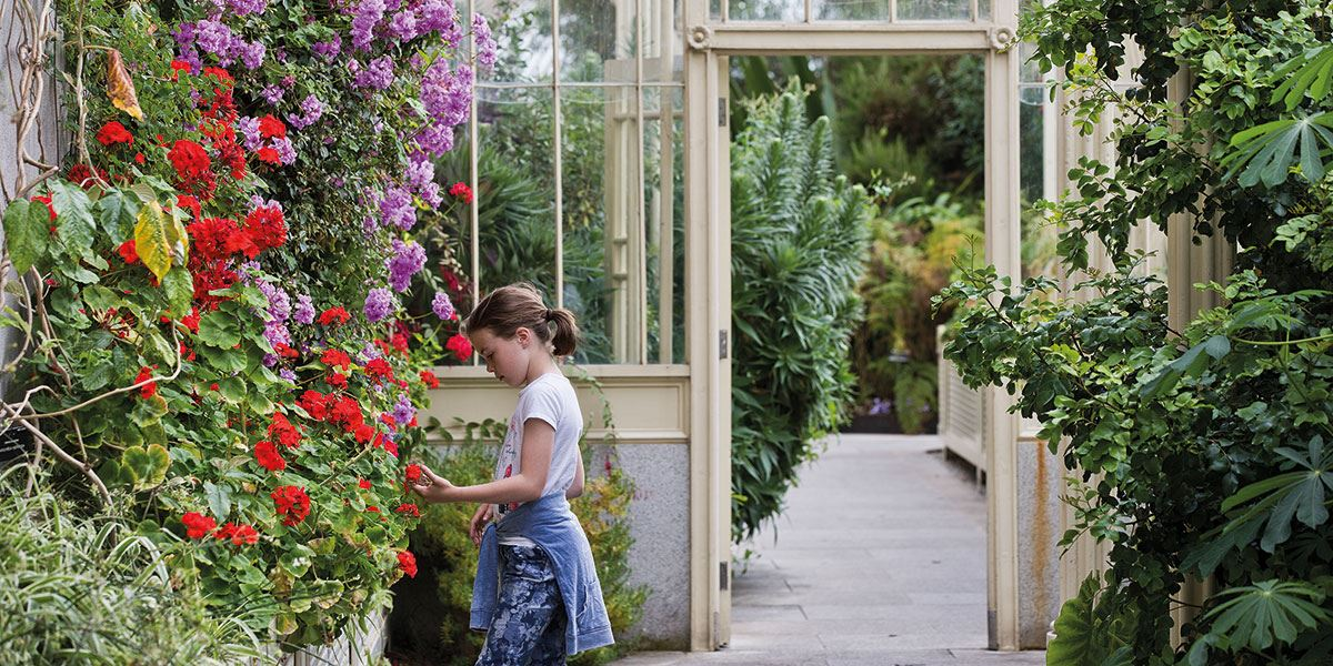 The National Botanic Gardens may not be in walking distance of the city centre, but is well worth the trip