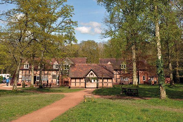 Explore Queenswood Country Park & Arboretum