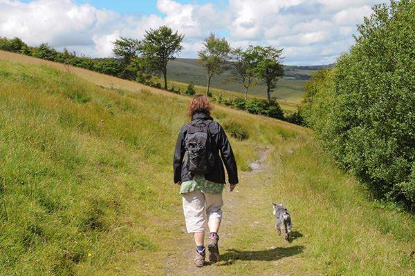 Walking on Exmoor