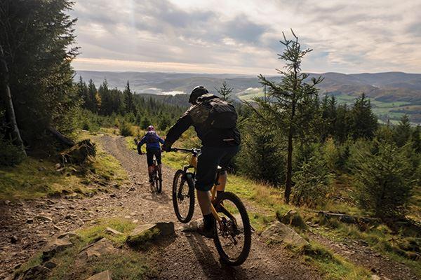 Bike trails at Glentress