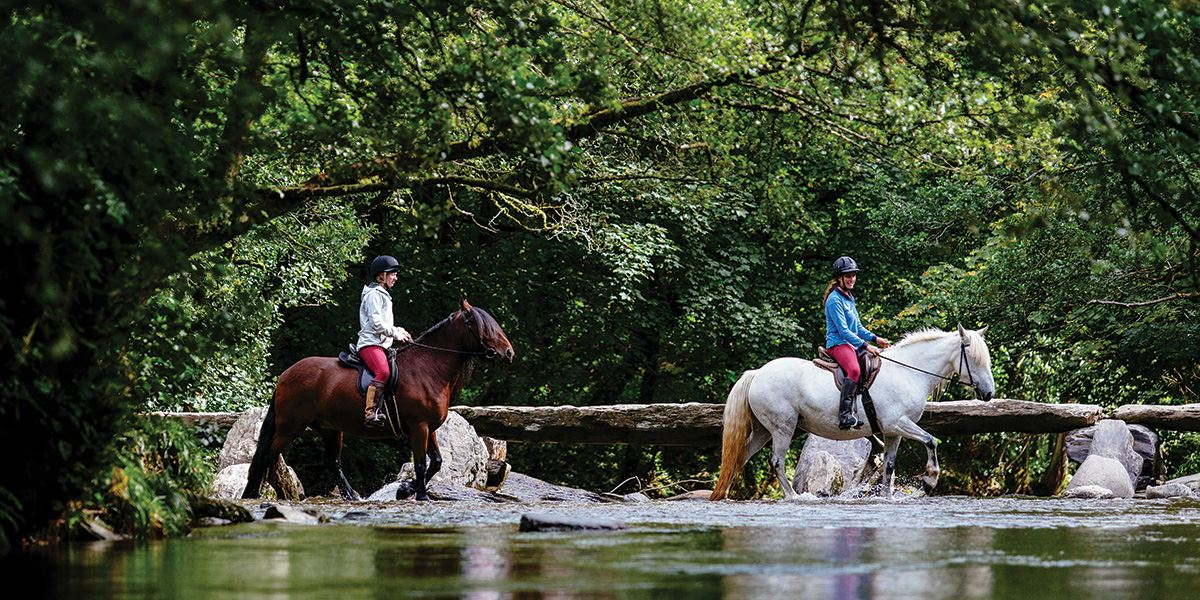 Horseriding through the River Barle