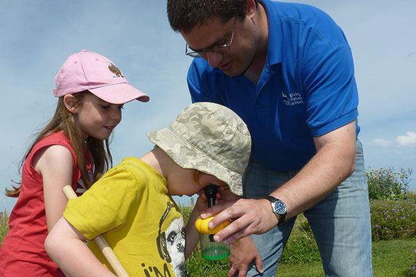 Take part in a bug hunt at RSPB Frampton Marsh