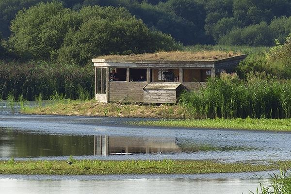 Island Hide at RSPB Titchwell Marsh