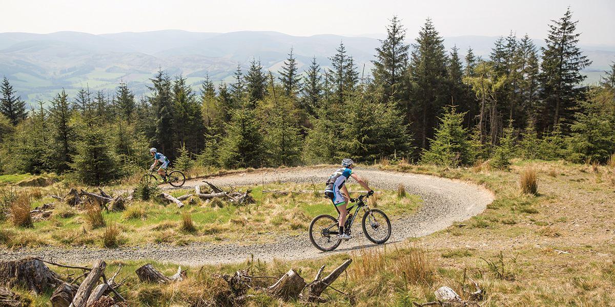 Explore the famous trails of Glentress