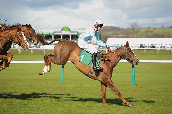 Hurdle race at Uttoxeter Racecourse