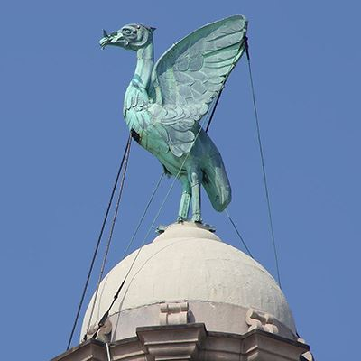 The Liver Birds have have a wingspan of 12ft