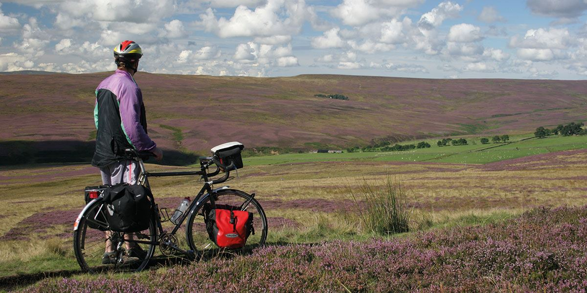 Explore this beautiful area by bike
