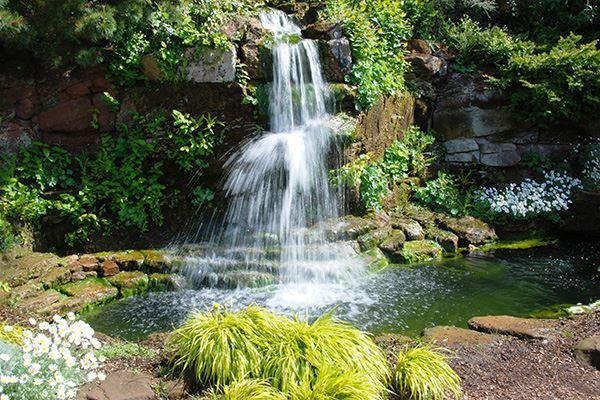 Ness Botanic Gardens