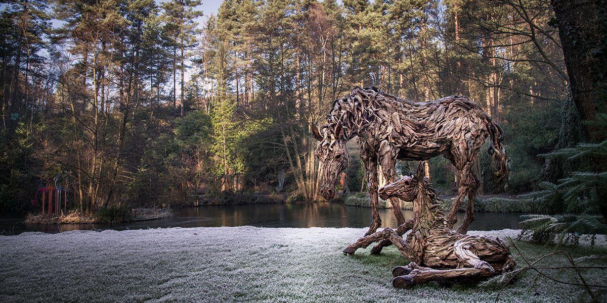 Driftwood horse sculpture at The Sculpture Park Surrey