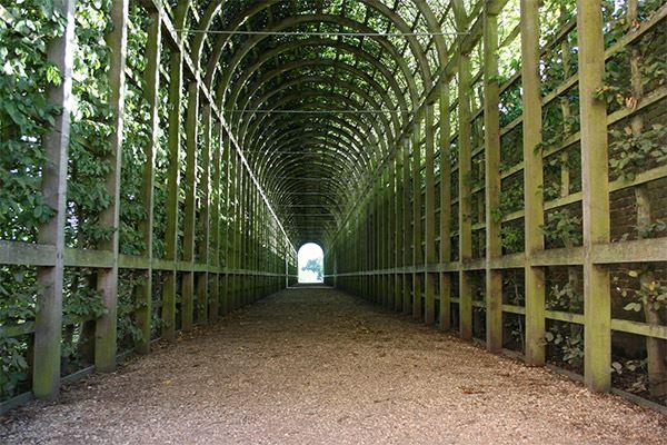 Hampton Court Vineyard