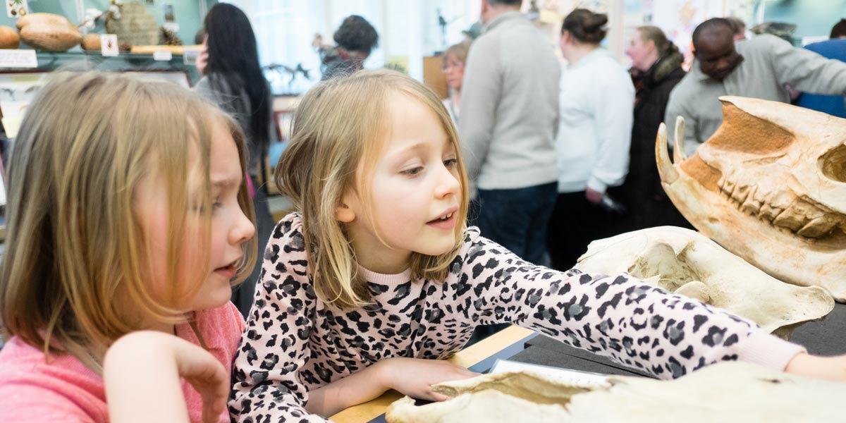 Children exploring dinosaursWorld at the museum in Liverpool