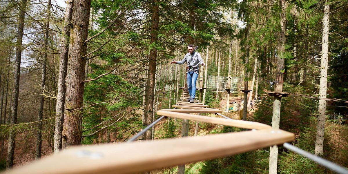Treetops balance beams at Go Ape Maften