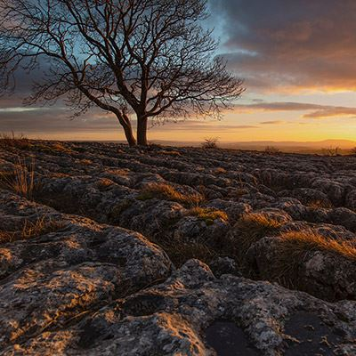 North Yorkshire and the Dales