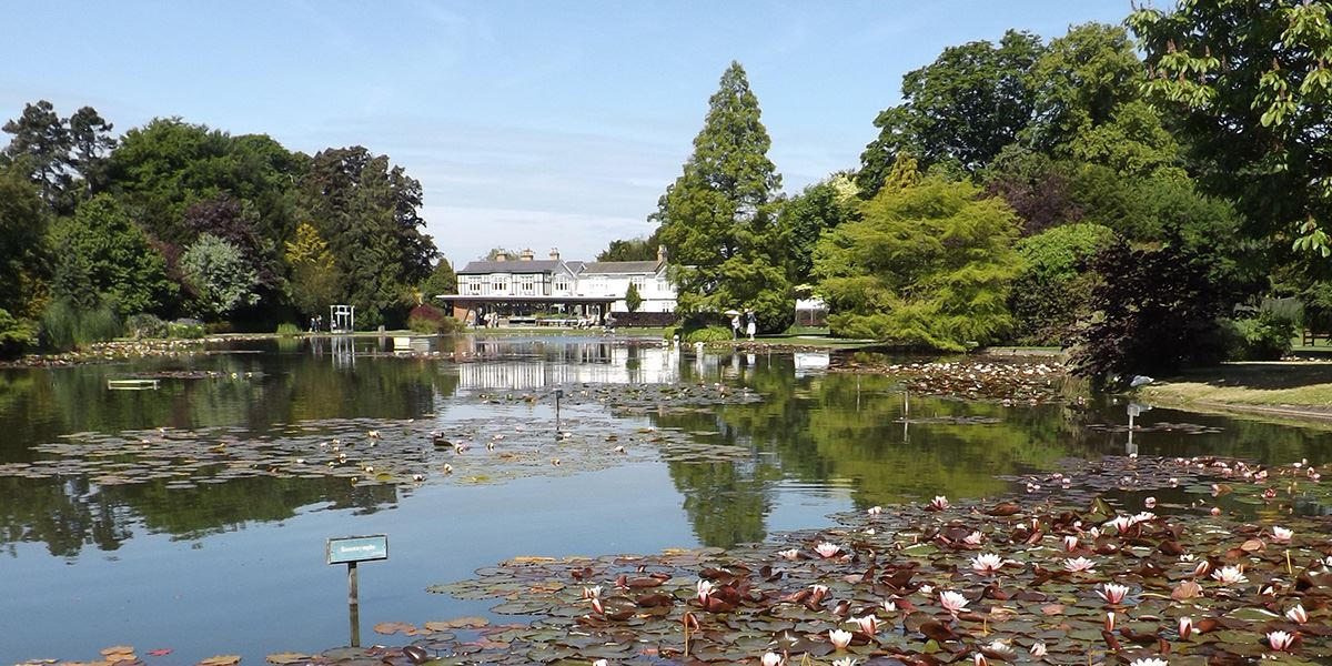Burnby Hall and Gardens